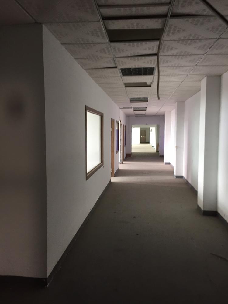 坂田岗头路口原房东两层2000平方带装修面积实在