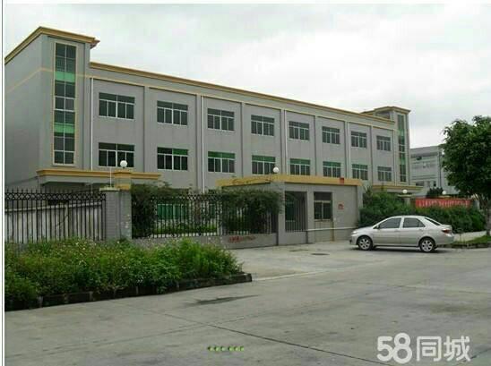 香港房东出租标准一楼1500平方