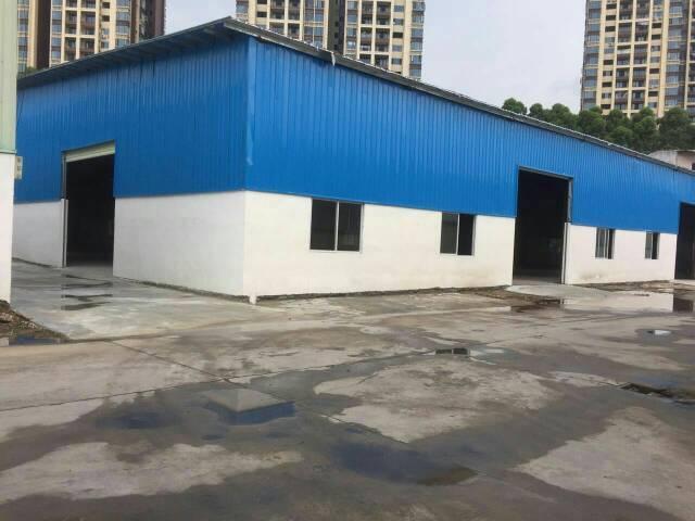 东城新出单一层铁皮房5000平方适合做小加工厂和仓库!接受污-图4