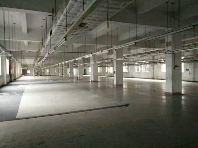 厚街镇靠南城莞太路边新出标准独门独院厂房6000平方,