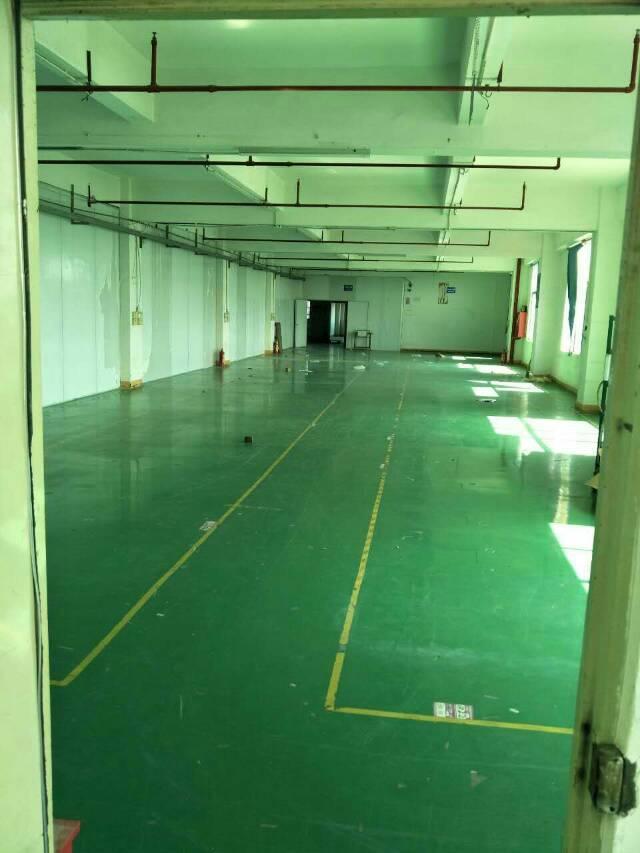 西乡固戍地铁站附近新出600平方带装修厂房出租-图4