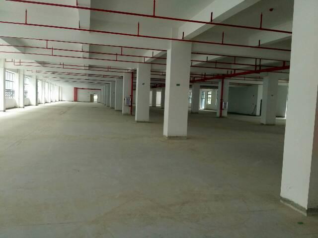 辅城坳工业区一楼600平米出租