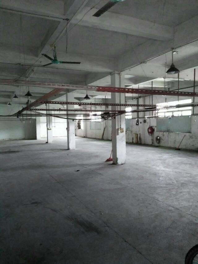 石排镇标准厂房1000平米招租