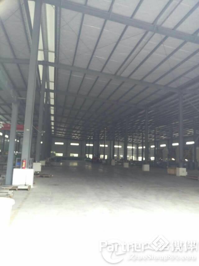 东莞刚出5000平钢构厂房滴水8米高地价出租