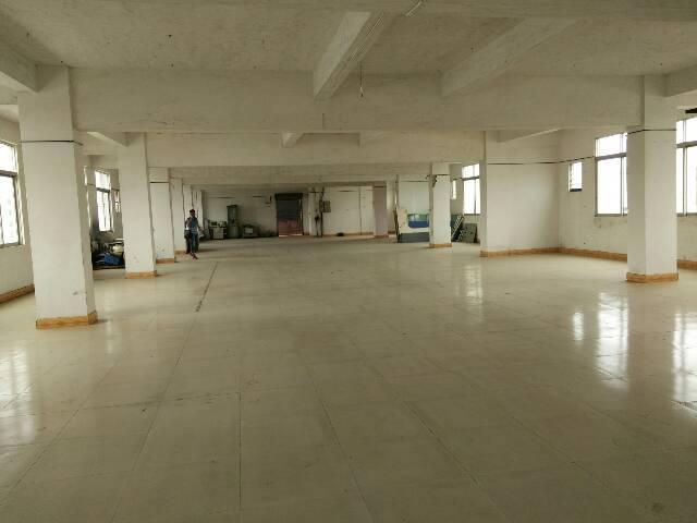横沥新出厂房,2000平方