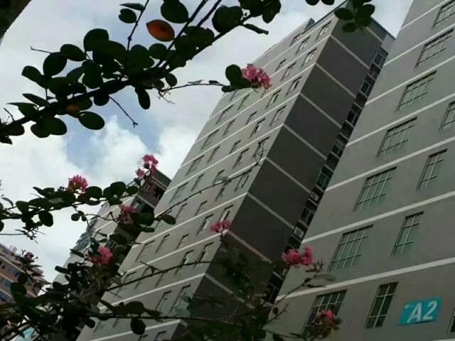 【低碳城】龙岗高新产业园3楼1450平米