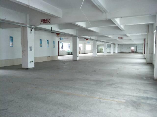 观澜福民新出单层1650平厂房招租