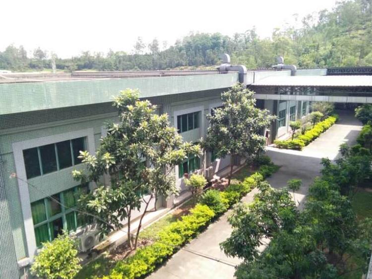 靠深圳标准一层厂房.花园式园区、高7米