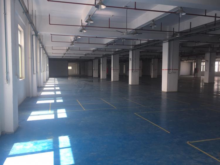 福永镇凤凰工业区楼上3600平方带装修厂房招租大小分组-图2