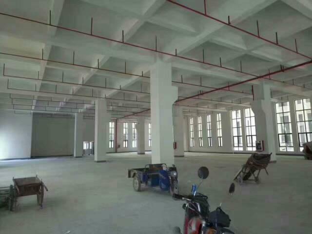 黄江一楼带牛角位高度七米原房东重工业厂房招租