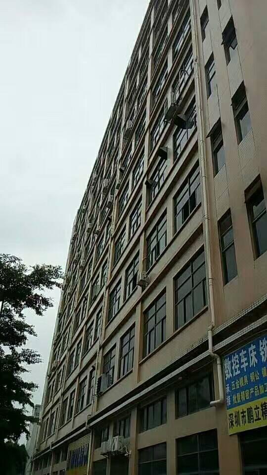 李松朗楼上精装修1280平方14块