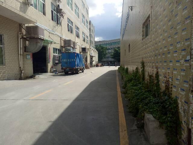 石岩大型园区新出3层4000m²精装修厂房-图4