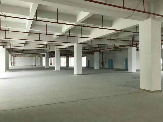 平湖新出一楼带卸货平台物流仓库2000平方米招租-图3