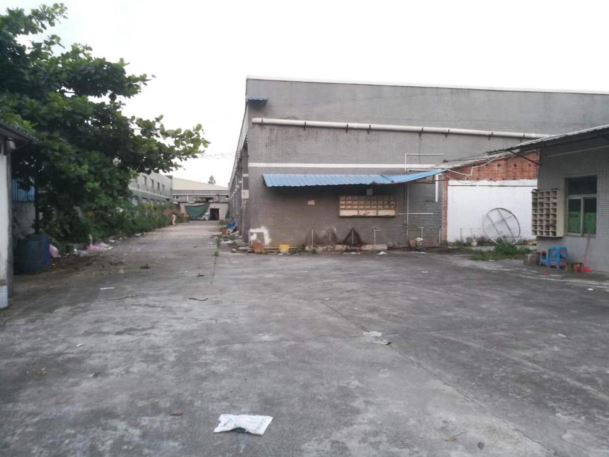 横沥新出独院钢构厂房滴水7米