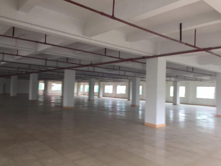茶山新出标准厂房5600平方,厂区内空地面积大,上东部快线快