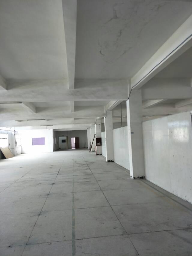 黄江镇鸡啼岗附近新出1楼900平标准厂房出租