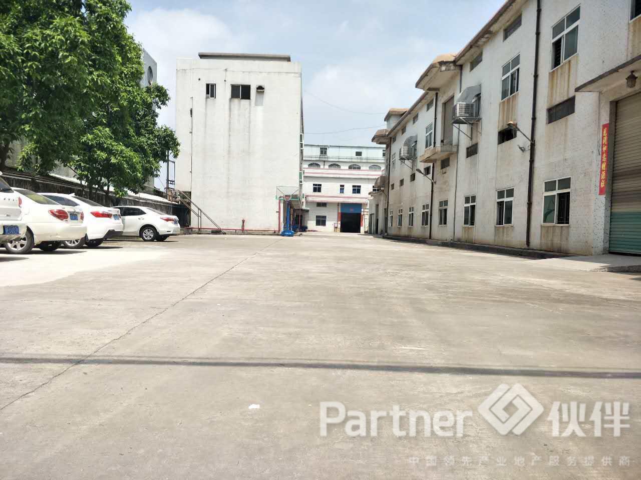 谢岗镇建筑 5300 ㎡ 村委合同厂房出售