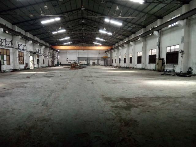 黄江田美新出钢构独院1万平米,高度9米带行车,可分租