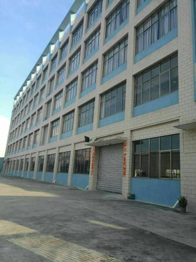 石排镇标准厂房一楼1500平方出租