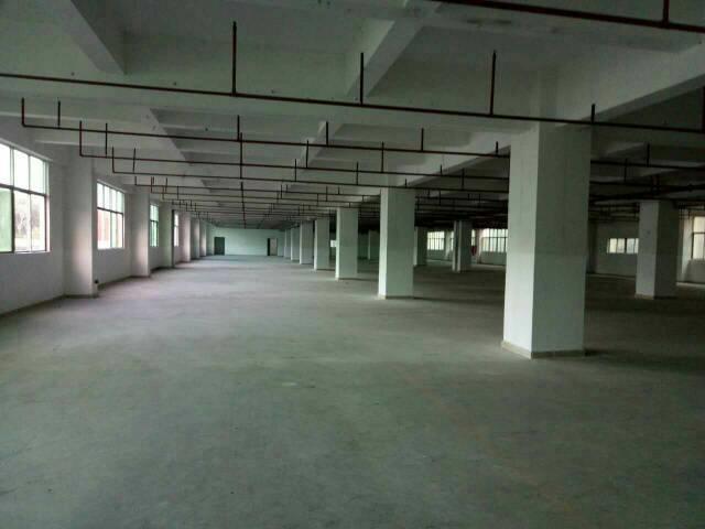 龙华大浪高薪产业园新出厂房2800平米