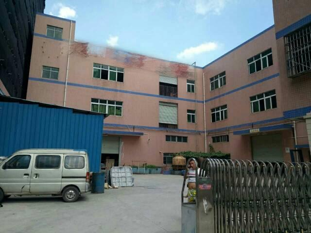 大岭山镇新塘村独院厂房1-3层总面积4700平米招租-图2