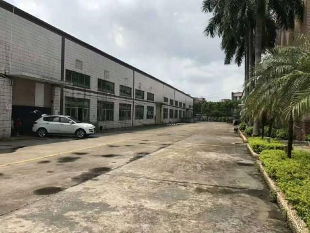 黄江镇单一层独院钢构厂房3700平米火爆招租