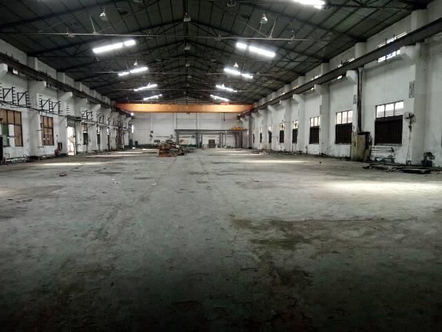 黄江镇中心单一层独院厂房12800平米招租