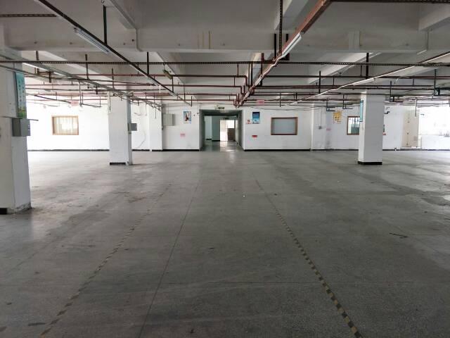 东城牛山一楼厂房2000平方