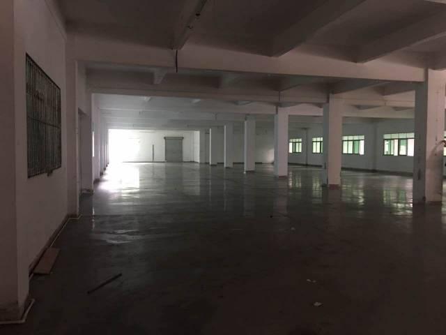 黄江镇靠公明0距离新出经典小独院厂房1-3层4000平方、