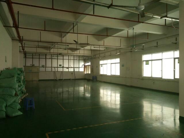 黄江靠深圳新空出独院厂房分租楼上1250平方出租,可做珍珠棉-图3