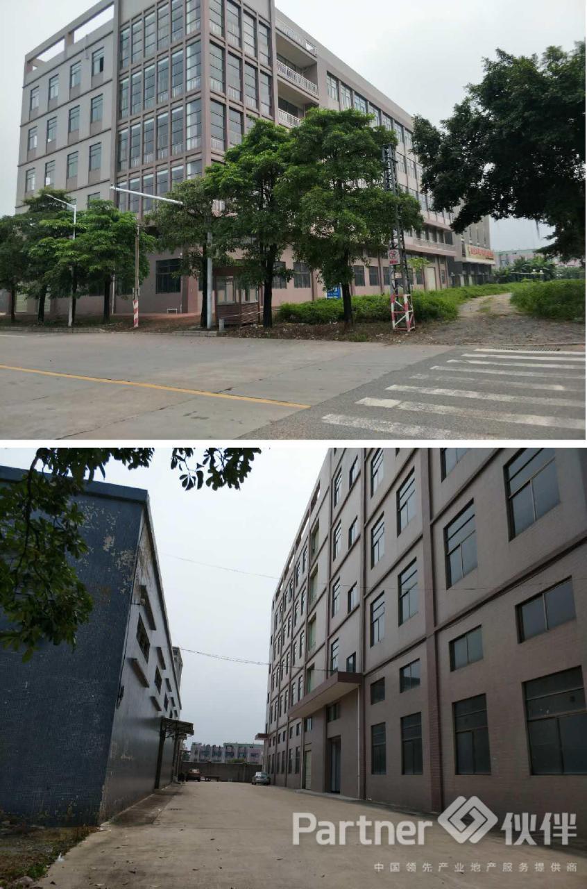 石排镇占地 2440 ㎡ 建筑 9035 ㎡独栋国有证厂房出