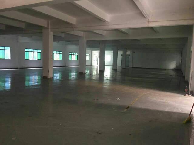 黄江靠常平新出一楼1400平方带办公室装修
