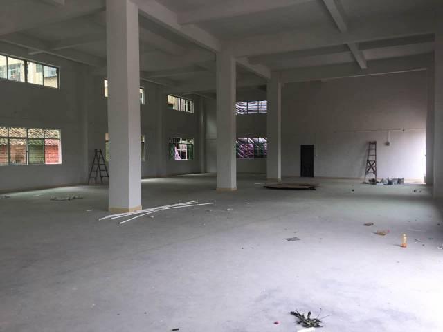 龙见田原房东新900方单一层高6米空地大-图3