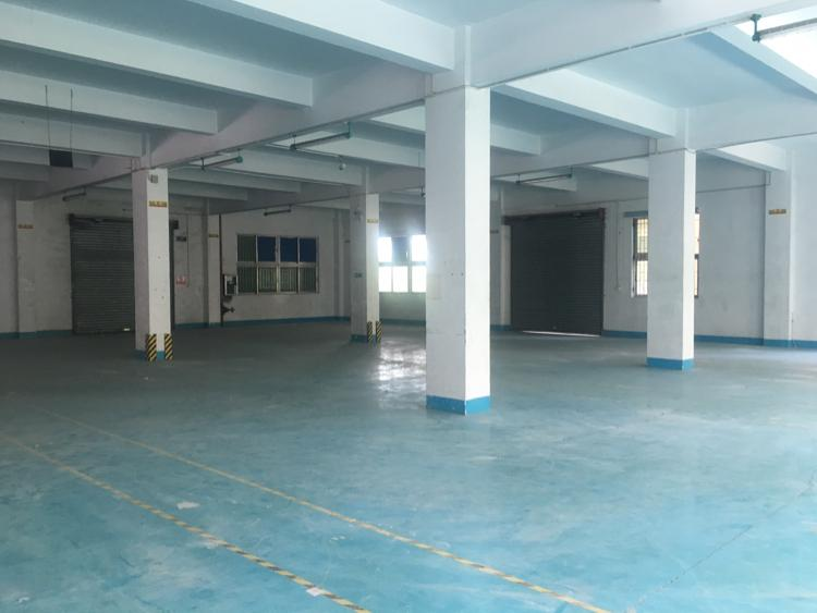 观澜大和标准一楼带卸货平台厂房1300平出租
