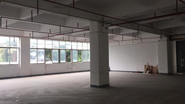 宝安兴东地铁口新出1300平厂房 位置好