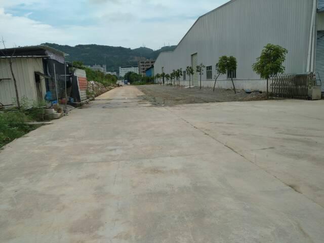 村头一楼700平仓库出租5千平空地雨棚可进货柜-图2