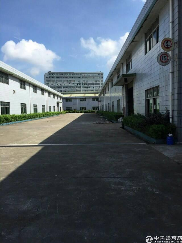 光明新区4300平方独栋钢构厂房出租,滴水8米!可分租。