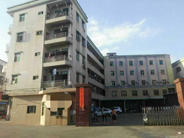 靠大朗原房东厂房(1~4)层4200平米