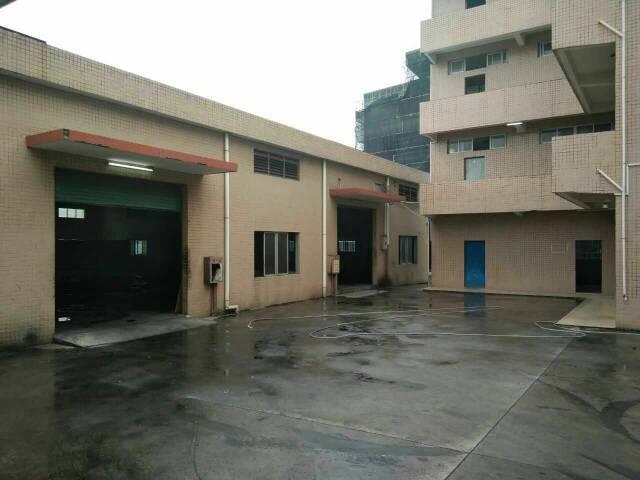 大岭山镇杨屋靠近长安原房东单一层1200平低价出租
