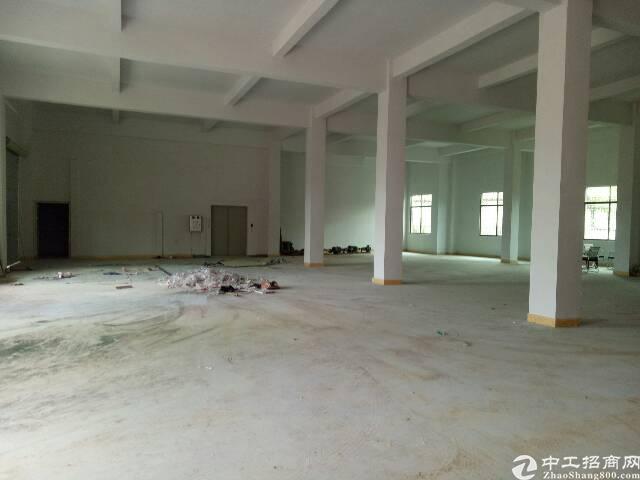 黄江镇龙见田独栋标准厂房2100平米招租