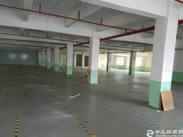 万江8500平米楼房优质独院-图3