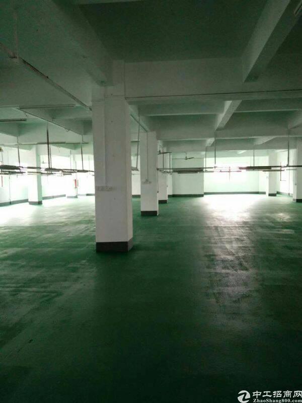 万江二楼1000平米全新装修-图3