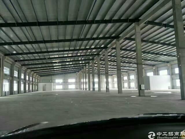 横岗原房东独院钢构5000平方仓库出租,滴水11米!