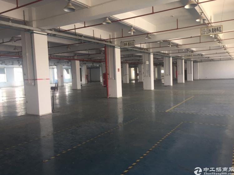 福永镇凤凰工业区楼上3600平方带装修厂房招租大小分组-图6
