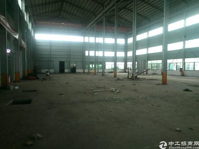 公明镇龙大高速出口旁新出4000平米滴水位15米钢构厂房出