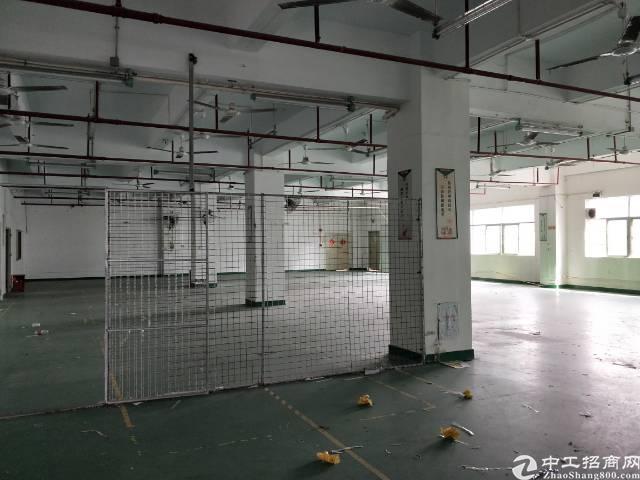 坂田天虹小型电商楼46-488平出租