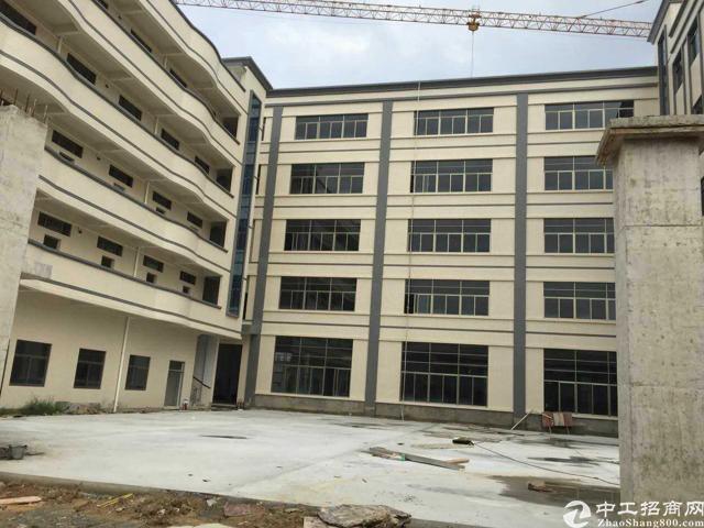 企石镇成熟工业区独院标准厂房17200平方招租