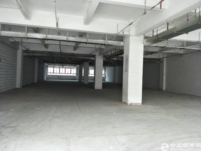 工业园一楼厂房分租-图3