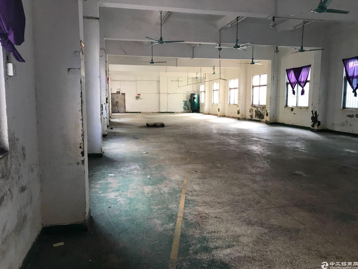 汤坑新出1-2楼1800平米带装修厂房出租