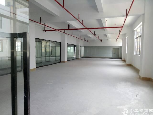 西丽1000平方办公研发仓库出租-图4